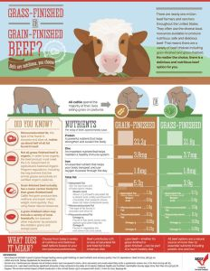 Grass vs Grain Finished Beef
