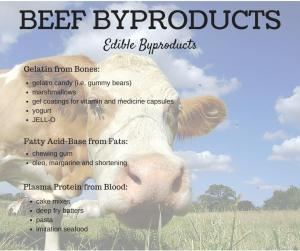 beef, byproducts, cattle